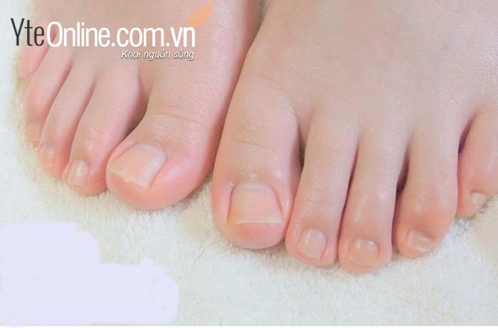 Tổng quan về chậu ngâm chân